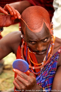 Kenya: Amboseli, Maasai (aka Masai) groom Saroni ole Nkaja applying ochre for the wedding ceremony, May.