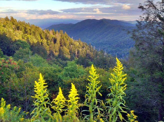 Elevation 5046' - Smoky Mountain N P  - NWNL Mississippi River Basin expedition 2013