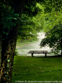 Missouri: St. James, Meremec Springs Park, park bench at confluence of two streams, (Ozarks), July