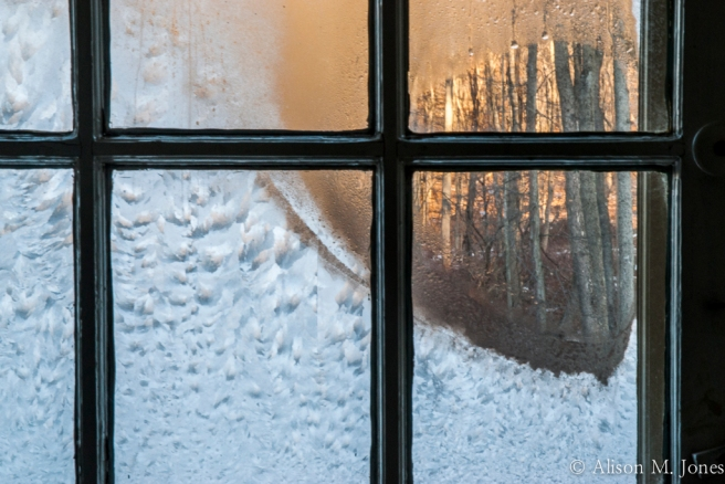 USA: New Jersey, Hunterdon County, Upper Raritan River Basin, Tewksbury Township, Mountainville, 2 Sawmill Road, looking through frosted window out to hard wood forest at sunrise