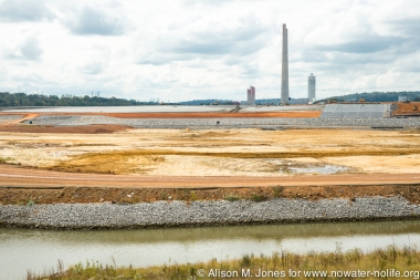USA: Tennessee, Tennessee River Basin, Kingston, TVA's coal fly ash spill, Swan Pond Road