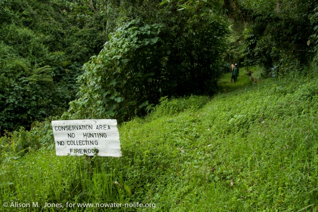 Kenya:  Mara River Basin, conservation sign in Mau Forest on Saosa River east of Kericho