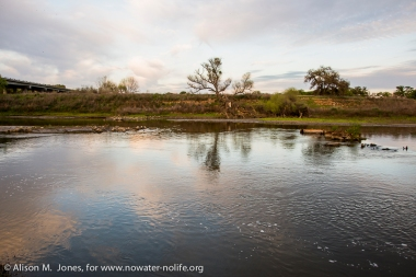 California, San Joaquin River National Wildlife Refuge