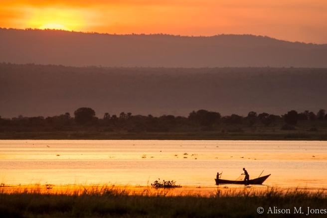 East AFrica:  Uganda, Murchison Falls National Park