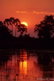 Botswana: Okavango Delta, Moremi Game Reserve, Xigera Camp, sunset.
