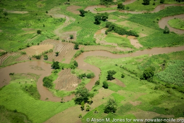 Africa: Uganda, oxbow flooding with farm fields, White Nile River Basin