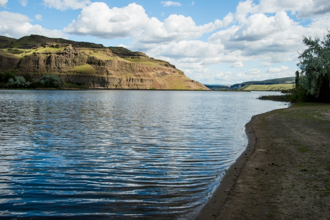 USA: Washington, Columbia and Snake River Basins, Lyons Ferry, confluence of the Snake and Palouse Rivers, Lyons Ferry Park on the Palouse River Estuary, called Lake Herbert G. West