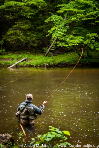 USA: New Jersey, Upper Raritan River Basin, Califon, River Road, South Branch of the Raritan River, Ken Lockwood Gorge, fly-fisherman