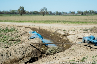USA: California, Arbuckle, irrigation drainage ditch, levee