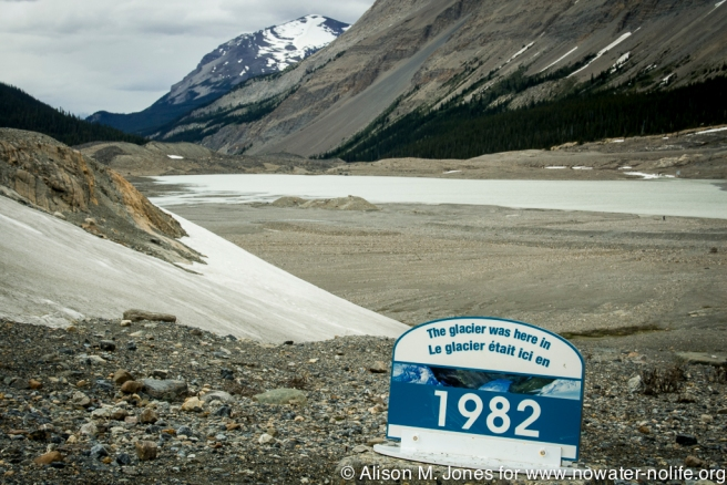 Canada: Alberta, Columbia Icefields, retreating Athabasca Glacier