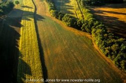 New Jersey: Upper Raritan Basin, Hunterdon County, Tewksbury Township, Oldwick, aerial view of countryside at sunrise from hot-air balloon,