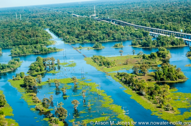 USA:  Louisiana, Aerial photo of Atchafalaya Basin area, St Martin Parish, electric lines and posts for old RR track on Right, next to Interstate 10 elevated highway - bridge - causewauy over Lake Henderson (aka Henderson Swamp), wetlands with bald cypress standing in water (Taxodium distichum, aka  baldcypress, bald-cypress, cypress, southern-cypress, white-cypress, tidewater red-cypress, Gulf-cypress, red-cypress, or swamp cypress), a deciduous conifer