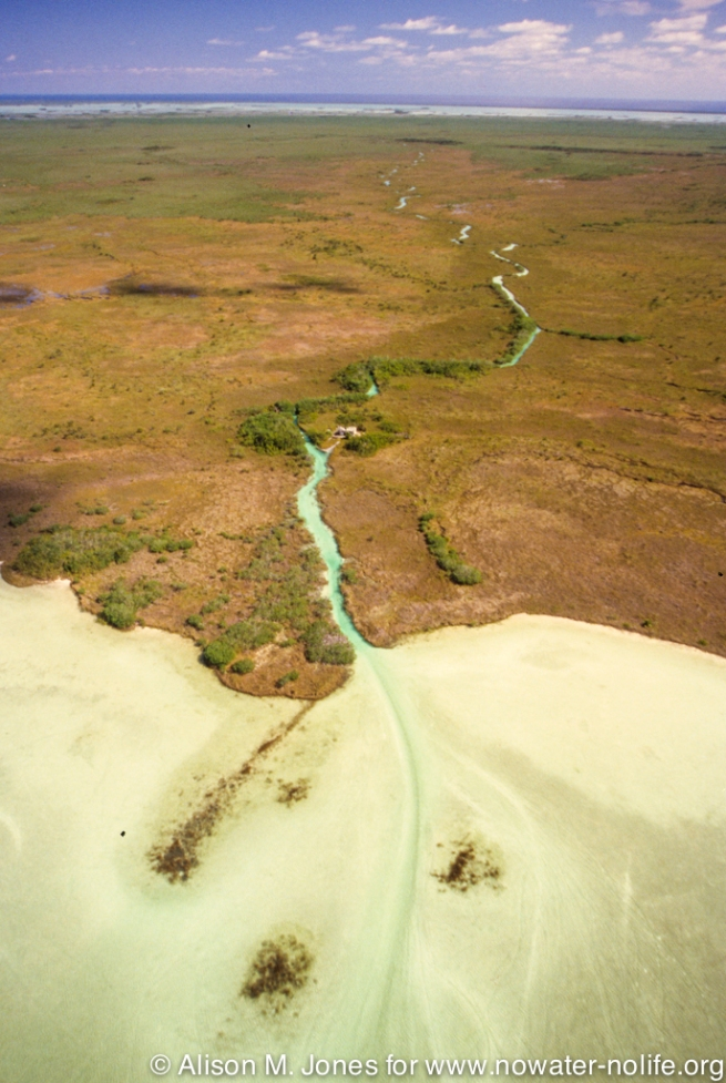Mexico: Sian Ka'an Biosphere Reserve, aerial views of Old Maya canal from Gulf of Mexico into Lake Campechen. LightHawk