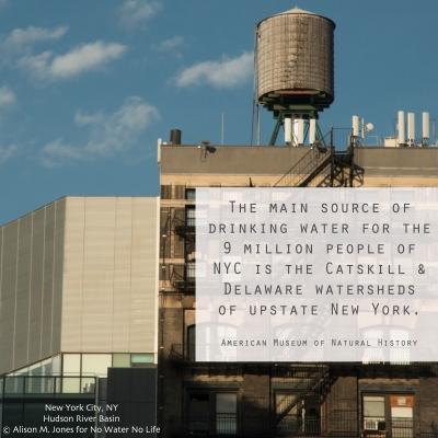 Misc-NYC.jpg