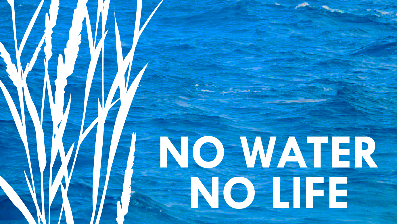 NO WATER NO LIFE BLOG