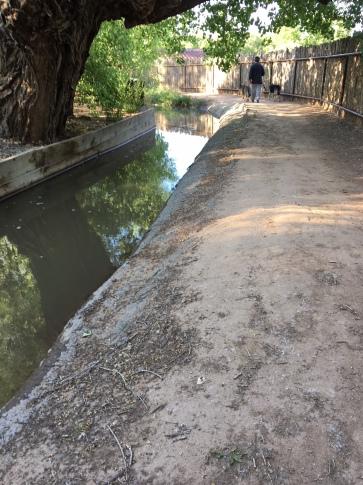 IMG_4314 Acequia path dogwalker.jpg