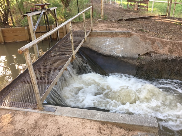 IMG_4323 Weir releasing irrigation water.jpg