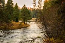 Metolius River Springs headwaters